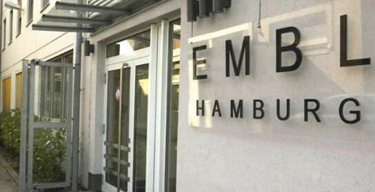 欧洲分子生物实验室(EMBL)医学博士项目